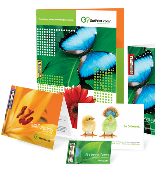 Custom business card design printing at gotprint get my free sample kit business cards reheart Image collections